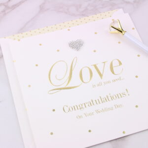 Large Love Is All You Need Wedding Card